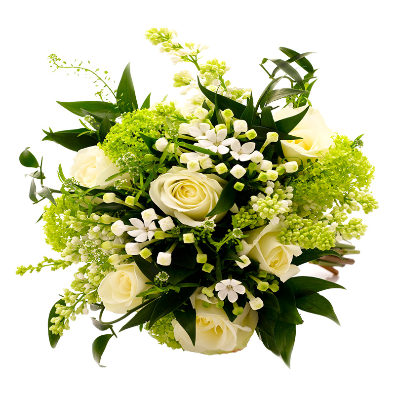 Gift bouquet of white roses